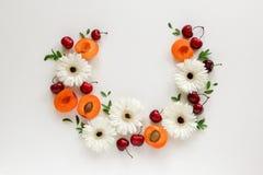 Composición del círculo, arreglo de flores y frutas foto de archivo