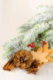 Composición del concepto de la Navidad con el árbol de abeto, cono del pino, especias a Fotografía de archivo