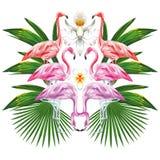 Composición del espejo del flamenco y de hojas Foto de archivo libre de regalías