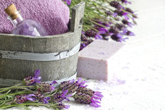 Composición del extracto del cuidado del cuerpo del balneario de los cosméticos de la lavanda Fotografía de archivo libre de regalías