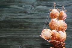 Composición del mar con la nave, conchas marinas, espacio de la copia en backg de madera fotografía de archivo libre de regalías