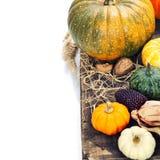 Composición del otoño Fotos de archivo libres de regalías