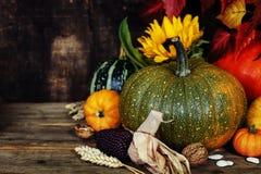 Composición del otoño Foto de archivo