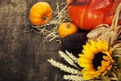 Composición del otoño Imagen de archivo