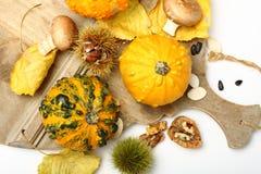 Composición del otoño Fotografía de archivo libre de regalías