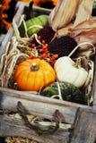 Composición del otoño Imagen de archivo libre de regalías