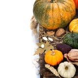 Composición del otoño Imágenes de archivo libres de regalías