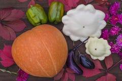 Composición del otoño Fotografía de archivo