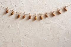 Composición del otoño Bellota con las pinzas en la línea de ropa cuerda Clavijas de madera Endecha plana, visión superior, espaci fotos de archivo