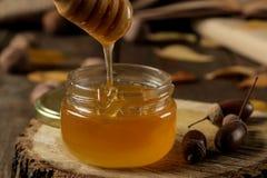 Composición del otoño con el primer y las bellotas de la miel en un soporte de madera en una tabla de madera fotografía de archivo libre de regalías