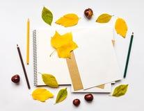 Composición del otoño con el sketchbook y los lápices, adornados con las hojas del amarillo y del verde Endecha plana, visión sup Imagen de archivo libre de regalías