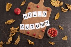 Composición del otoño con el tablero, las hojas y la muestra Imagen de archivo libre de regalías