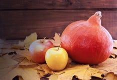 Composición del otoño con la calabaza, las hojas de arce amarillas y la manzana o Fotografía de archivo libre de regalías