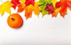 Composición del otoño con las hojas de arce y las calabazas amarillas l plano Imagenes de archivo