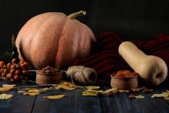 Composición del otoño con las nueces de la calabaza y bayas y una bufanda caliente en una tabla azul y un fondo negro fotografía de archivo