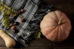 Composición del otoño con los árboles de la calabaza de una tela escocesa y de castaña en una tabla marrón de madera fotografía de archivo