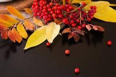 Composición del otoño de hojas, de bayas de serbal y de velas Foto de archivo libre de regalías