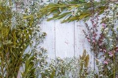 Composición del otoño de hojas, de flores y de bayas en la parte posterior de madera Foto de archivo libre de regalías