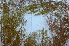 Composición del otoño de hojas, de flores y de bayas en la parte posterior de madera Imagen de archivo libre de regalías
