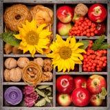 Composición del otoño en caja de madera collage Foto de archivo libre de regalías