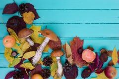 Composición del otoño, espacio de la copia Fotos de archivo