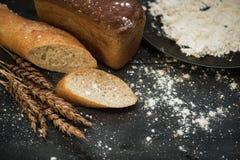 Composición del pan con trigo Foto de archivo libre de regalías