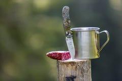 Composición del primer de la navaja de bolsillo plegable pegada verticalmente en tocón de árbol, salchicha y taza de la lata al a imagen de archivo libre de regalías