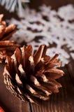 Composición del ` s del Año Nuevo de los conos de un pino Fotografía de archivo