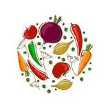 Composición del vector con las verduras: zanahoria, tomate, pimientas y cebolla stock de ilustración
