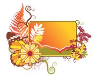 Composición del verano con la mariposa Foto de archivo libre de regalías