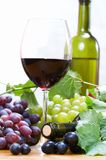 Composición del vino fotos de archivo libres de regalías