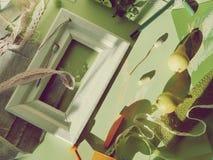 Composición estacional decorativa de frutas, de la decoración, de verdes y de un bastidor blanco en el papel entonado verde fotografía de archivo