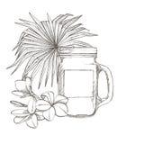 Composición este vaso y hojas de palma tropicales, ejemplo del vector Ejemplo pintado dibujado mano gráfica lugar Imagen de archivo