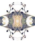 Composición estilizada del gráfico de la orquídea del arte Imágenes de archivo libres de regalías