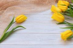 Composición festiva de la primavera Endecha plana Fotos de archivo libres de regalías