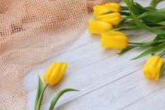 Composición festiva de la primavera Endecha plana Fotografía de archivo libre de regalías
