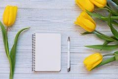 Composición festiva de la primavera Endecha plana Imagen de archivo libre de regalías