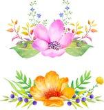 Composición floral de la acuarela Sistema romántico de plantas, de bayas y de flores dibujadas mano para el diseño Imágenes de archivo libres de regalías