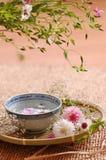 Composición floral del balneario foto de archivo libre de regalías