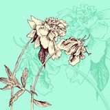 Composición floral del vintage Imagenes de archivo