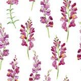 Composición floral Mime al día del ` s, boda, cumpleaños, Pascua, día del ` s de la tarjeta del día de San Valentín Fotografía de archivo libre de regalías