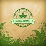 Composición herbaria orgánica natural del vector Imagen de archivo libre de regalías
