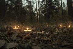 Composición hermosa de Halloween con las runas y las velas en la hierba en ritual oscuro del bosque del otoño Fotografía de archivo
