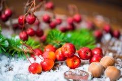 Composición hermosa de la Navidad con la manzana, las nueces, el árbol de abeto y s Foto de archivo libre de regalías