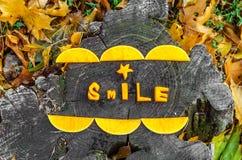 Composición hermosa de las calabazas para las sonrisas sinceras Imagenes de archivo
