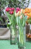 Composición hermosa de tulipanes en floreros foto de archivo libre de regalías