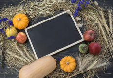Composición hermosa del otoño en del tema de la cosecha del otoño Foto de archivo libre de regalías