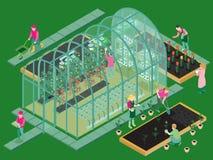 Composición isométrica del invernadero stock de ilustración