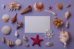 Composición marina con la tarjeta de papel Imagen de archivo libre de regalías