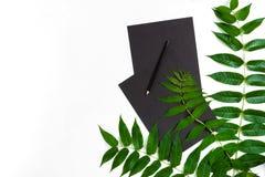 Composición natural con el sketchbook y lápices en la tabla blanca, adornada con las ramas verdes Endecha plana, visión superior, Imagen de archivo